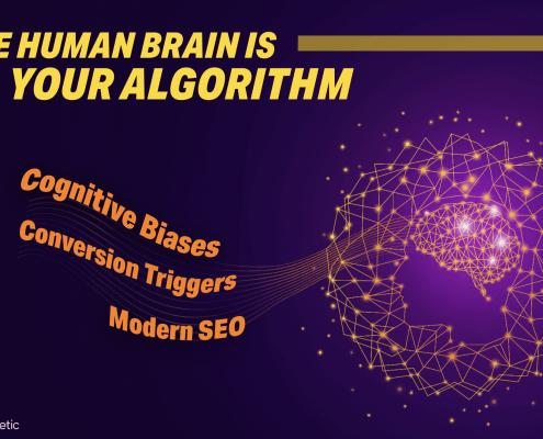Human Brain Algorithm